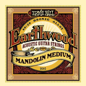Ernie Ball Earthwood Mandolin Medium 80-20 Bronze Loop End Set