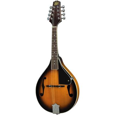 Rogue RM-100A A-Style Mandolin Sunburst